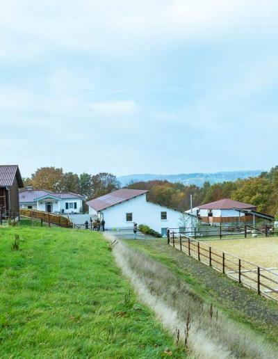 Sandplatz Paulinenhof | BPCT Bildungswerk pferdegestützte Coachings & Trainings