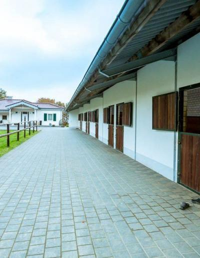 Stallungen Paulinenhof | BPCT Bildungswerk pferdegestützte Coachings & Trainings