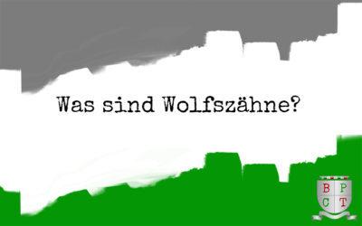 Was sind Wolfszähne?⠀
