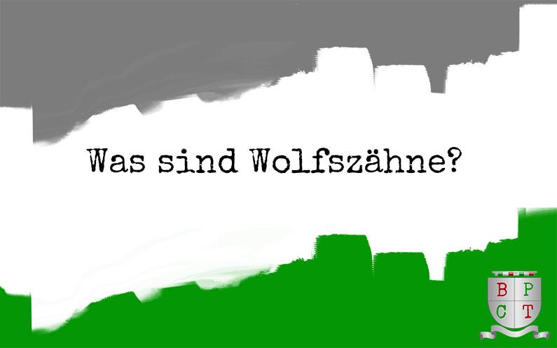 Was sind Wolfszähne?⠀ 18